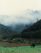 012 Taiwan landscap台灣風情畫吉他家施夢濤攝影作品Guitarist Albert:Taiwan landscap台灣風情畫025吉他家施夢濤 (3).jpg