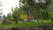 534 武陵農場 櫻花鉤吻鮭 七家灣溪:00110武陵農場櫻花鉤吻鮭七家灣溪.jpg