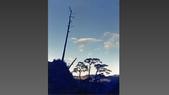 012 Taiwan landscap台灣風情畫吉他家施夢濤攝影作品Guitarist Albert:003台灣風景攝影古典吉他家施夢濤老師