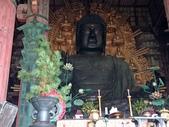 695奈良東大寺 南大門 大佛殿 世界最大木建築:奈良東大寺111南大門大佛殿吉他家施夢濤老師.jpg