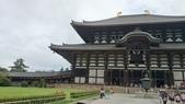 695奈良東大寺 南大門 大佛殿 世界最大木建築:奈良東大寺073南大門大佛殿吉他家施夢濤老師.jpg