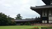 695奈良東大寺 南大門 大佛殿 世界最大木建築:奈良東大寺072南大門大佛殿吉他家施夢濤老師.jpg