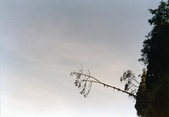012 Taiwan landscap台灣風情畫吉他家施夢濤攝影作品Guitarist Albert:Taiwan landscap台灣風情畫044吉他家施夢濤 (2).jpg