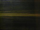 205 遊吟詩人-Minstrelman:遊吟詩人 002吉他老師施夢濤minstr