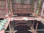 695奈良東大寺 南大門 大佛殿 世界最大木建築:奈良東大寺124南大門大佛殿吉他家施夢濤老師.jpg