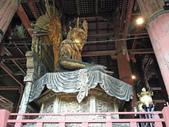 695奈良東大寺 南大門 大佛殿 世界最大木建築:奈良東大寺167南大門大佛殿吉他家施夢濤老師.jpg
