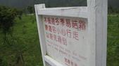 534 武陵農場 櫻花鉤吻鮭 七家灣溪:台七甲 武陵 梨山237古典吉他老師
