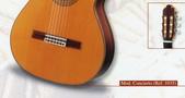 *3 西班牙吉他古典吉他品牌推薦~型號和材料*進口總代理:進口古典吉他064進口西班牙吉他Antonio Sanchez Guitar.jpg