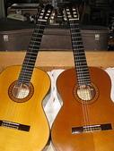 101古典吉他演奏琴收藏館:古典吉他演奏琴收藏655mm08.JPG