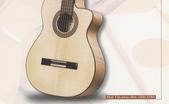 *3 西班牙吉他古典吉他品牌推薦~型號和材料*進口總代理:進口古典吉他098進口西班牙吉他Antonio Sanchez Guitar.jpg
