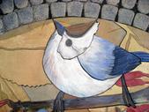534 武陵農場 櫻花鉤吻鮭 七家灣溪:00207武陵農場櫻花鉤吻鮭七家灣溪.jpg