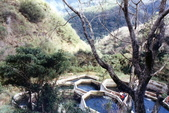 012 Taiwan landscap台灣風情畫吉他家施夢濤攝影作品Guitarist Albert:Taiwan landscap台灣風情畫032吉他家施夢濤 (3).jpg