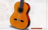 *3 西班牙吉他古典吉他品牌推薦~型號和材料*進口總代理:進口古典吉他029進口西班牙吉他Antonio Sanchez Guitar.jpg