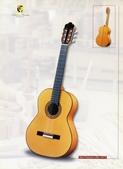 *3 西班牙吉他古典吉他品牌推薦~型號和材料*進口總代理:進口古典吉他050進口西班牙吉他Antonio Sanchez Guitar.jpg