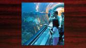 520 踏著彩虹去環島:00122踏著彩虹去環島080吉他老師施夢濤2008.jpg