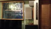 121黑檀非洲黑檀木吉他指板墨西哥鮑魚貝殼螺鈿 奧地利水晶 古典吉他老師:黑檀018非洲黑檀木吉他指板墨西哥鮑魚貝殼螺鈿 奧地利水晶 古典吉他老師.jpg
