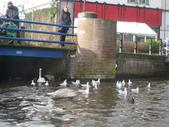 648荷蘭阿姆斯特丹運河2013全集760p:602阿姆斯特丹運河全集 施夢濤.JPG