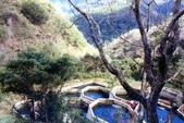 012 Taiwan landscap台灣風情畫吉他家施夢濤攝影作品Guitarist Albert:Taiwan landscap台灣風情畫032吉他家施夢濤 (2).jpg