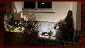 010 軌道燈投射燈工程設計製作LED燈魚池假山照明攝影燈光:軌道燈投射燈工程設計製作LED燈魚池假山照明攝影燈光00119.jpg