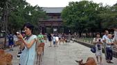 695奈良東大寺 南大門 大佛殿 世界最大木建築:奈良東大寺010南大門大佛殿吉他家施夢濤老師.jpg
