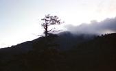 012 Taiwan landscap台灣風情畫吉他家施夢濤攝影作品Guitarist Albert:Taiwan landscap台灣風情畫001吉他家施夢濤 (2)-2.jpg