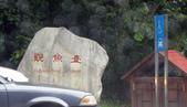 534 武陵農場 櫻花鉤吻鮭 七家灣溪:00109武陵農場櫻花鉤吻鮭七家灣溪.jpg