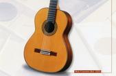 *3 西班牙吉他古典吉他品牌推薦~型號和材料*進口總代理:進口古典吉他045進口西班牙吉他Antonio Sanchez Guitar.jpg
