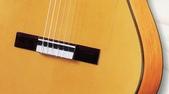 *3 西班牙吉他古典吉他品牌推薦~型號和材料*進口總代理:進口古典吉他053進口西班牙吉他Antonio Sanchez Guitar.jpg