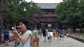 695奈良東大寺 南大門 大佛殿 世界最大木建築:奈良東大寺011南大門大佛殿吉他家施夢濤老師.jpg
