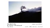 012 Taiwan landscap台灣風情畫吉他家施夢濤攝影作品Guitarist Albert:001台灣風景攝影古典吉他家施夢濤老師
