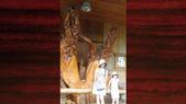 529 花東縱谷林田山:00109花東縱谷林田山古典吉他老師施夢濤吉他古典吉他教學.jpg