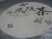 534 武陵農場 櫻花鉤吻鮭 七家灣溪:00211武陵農場櫻花鉤吻鮭七家灣溪.JPG