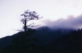 012 Taiwan landscap台灣風情畫吉他家施夢濤攝影作品Guitarist Albert:Taiwan landscap台灣風情畫001吉他家施夢濤 (3).jpg