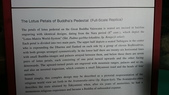 695奈良東大寺 南大門 大佛殿 世界最大木建築:奈良東大寺138南大門大佛殿吉他家施夢濤老師.jpg
