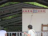 534 武陵農場 櫻花鉤吻鮭 七家灣溪:00137武陵農場櫻花鉤吻鮭七家灣溪.JPG