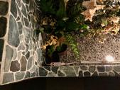 010 軌道燈投射燈工程設計製作LED燈魚池假山照明攝影燈光:軌道燈投射燈工程設計製作LED燈魚池假山照明攝影燈光00173.jpeg