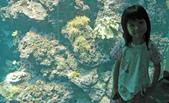 520 踏著彩虹去環島:00118踏著彩虹去環島080吉他老師施夢濤2008.jpg