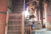 695奈良東大寺 南大門 大佛殿 世界最大木建築:奈良東大寺173南大門大佛殿吉他家施夢濤老師.jpg