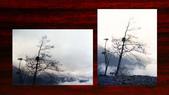 012 Taiwan landscap台灣風情畫吉他家施夢濤攝影作品Guitarist Albert:020-2台灣風景攝影古典吉他家施夢濤老師.jpg