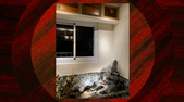 010 軌道燈投射燈工程設計製作LED燈魚池假山照明攝影燈光:軌道燈投射燈工程設計製作LED燈魚池假山照明攝影燈光00122.jpg