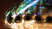 125台灣檜木巴西玫瑰木印度玫瑰木黑檀珍珠貝殼墨西哥鮑魚螺鈿奧地利水晶:台灣檜木巴西玫瑰木030印度玫瑰木黑檀珍珠貝殼墨西哥鮑魚螺鈿奧地利水晶.JPG