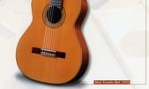 *3 西班牙吉他古典吉他品牌推薦~型號和材料*進口總代理:進口古典吉他019進口西班牙吉他Antonio Sanchez Guitar.jpg