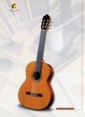 *3 西班牙吉他古典吉他品牌推薦~型號和材料*進口總代理:進口古典吉他017進口西班牙吉他Antonio Sanchez Guitar.jpg