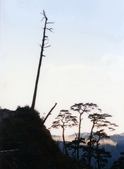 012 Taiwan landscap台灣風情畫吉他家施夢濤攝影作品Guitarist Albert:Taiwan landscap台灣風情畫003吉他家施夢濤   (2).jpg