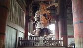 695奈良東大寺 南大門 大佛殿 世界最大木建築:奈良東大寺169南大門大佛殿吉他家施夢濤老師.jpg