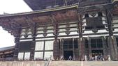 695奈良東大寺 南大門 大佛殿 世界最大木建築:奈良東大寺074南大門大佛殿吉他家施夢濤老師.jpg
