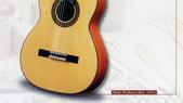 *3 西班牙吉他古典吉他品牌推薦~型號和材料*進口總代理:進口古典吉他042進口西班牙吉他Antonio Sanchez Guitar.jpg