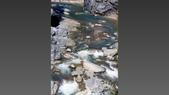 012 Taiwan landscap台灣風情畫吉他家施夢濤攝影作品Guitarist Albert:004台灣風景攝影古典吉他家施夢濤老師