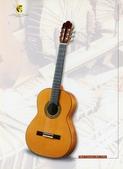 *3 西班牙吉他古典吉他品牌推薦~型號和材料*進口總代理:進口古典吉他047進口西班牙吉他Antonio Sanchez Guitar.jpg