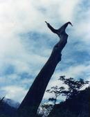 012 Taiwan landscap台灣風情畫吉他家施夢濤攝影作品Guitarist Albert:Taiwan landscap台灣風情畫027吉他家施夢濤 (2).jpg